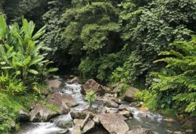 Mambukal(マウンテンリゾート)