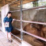 Omochiさん(女性)年齢:20代 留学期間:1ヶ月半